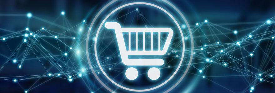 Les avantages de faire ses courses en ligne depuis chez soi